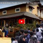 Vua xóc đĩa bịp Trần Hạo giới thiệu ưu-nhược điểm của bát hình